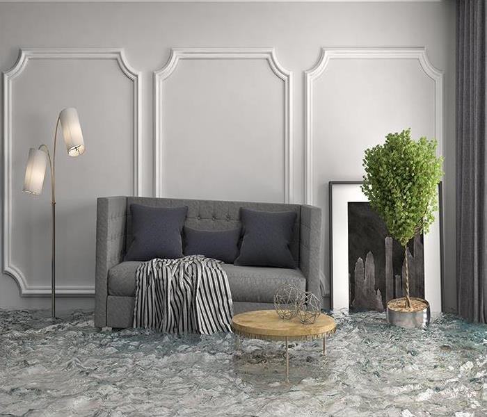 Water Damage SERVPRO's Water Removal Team Rescues Homes From Drips, Broken Water Lines, And Major Floods