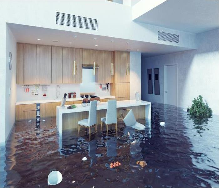 Why SERVPRO You Need Our Team To Restore Your Rocky Hill Home After A Flood!