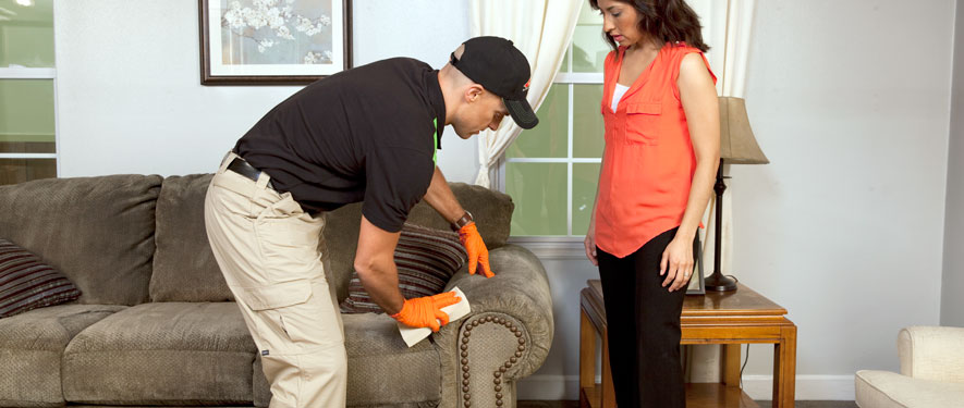 Knoxville, TN carpet upholstery cleaning